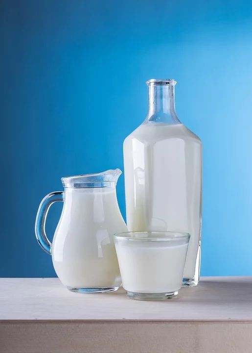Dairy products for fatty liver