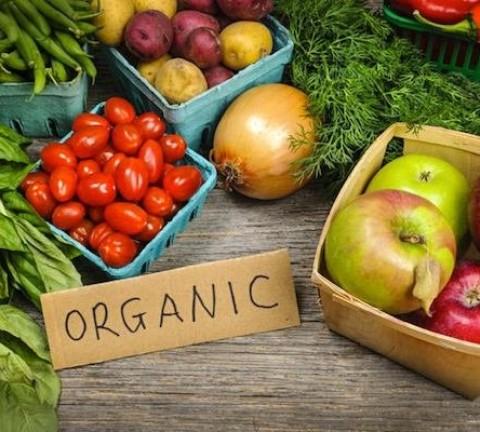 fatty liver organic food