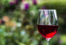 Photo of NAFLD & Wine: Can You Drink Wine if You Have Fatty Liver?